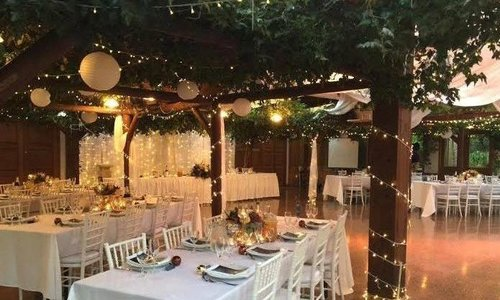 West Auckland vineyard best venue for winter wedding